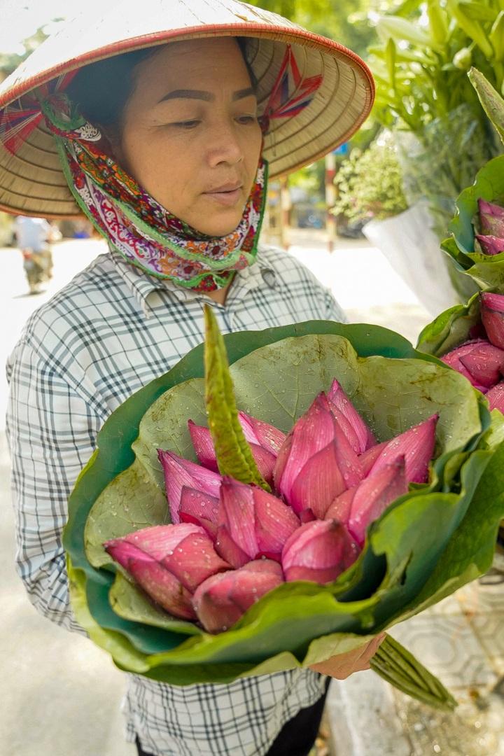 Nhẹ nhàng hương sắc hoa sen đầu mùa - 10