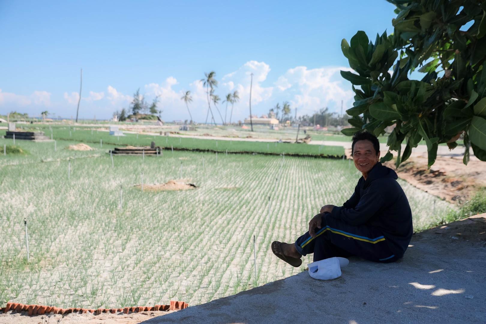 Ngọc tím Lý Sơn vào vụ: Giá cao gấp đôi, nông dân khấp khởi vui mừng - 18