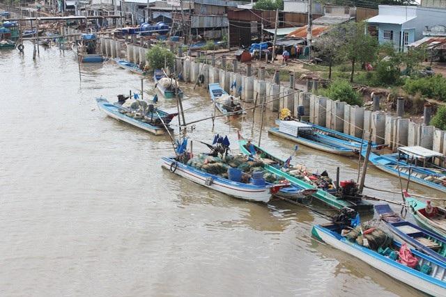 Nhiều phương tiện ở Bạc Liêu cũng ngưng hoạt động ra biển từ 9h ngày 1/1.