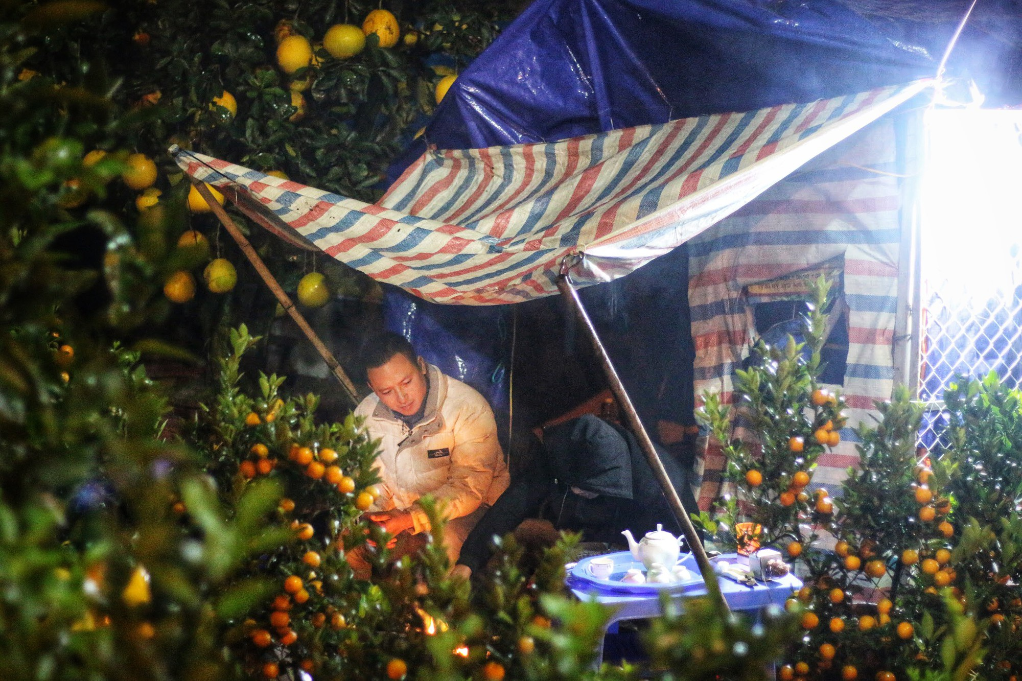 Lo mất trộm, người Hà Nội dựng lều đốt lửa trông đào xuyên đêm - Ảnh 3.