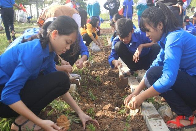 Học sinh ươm cây xanh trồng ở nghĩa trang, di tích lịch sử - Ảnh 8.