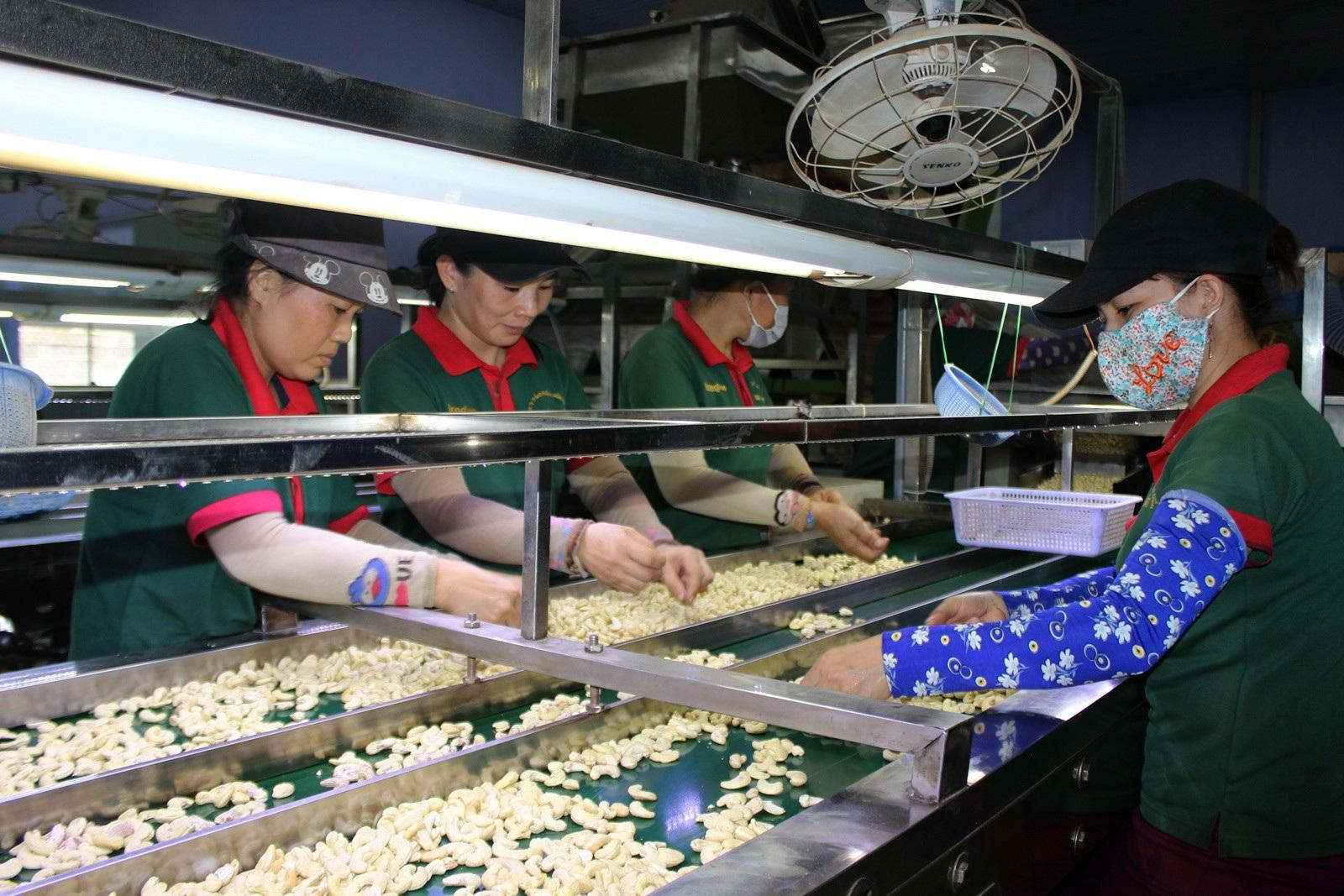 Phú Yên: Mức thưởng Tết thấp nhất là 100.000 đồng - Ảnh 1.