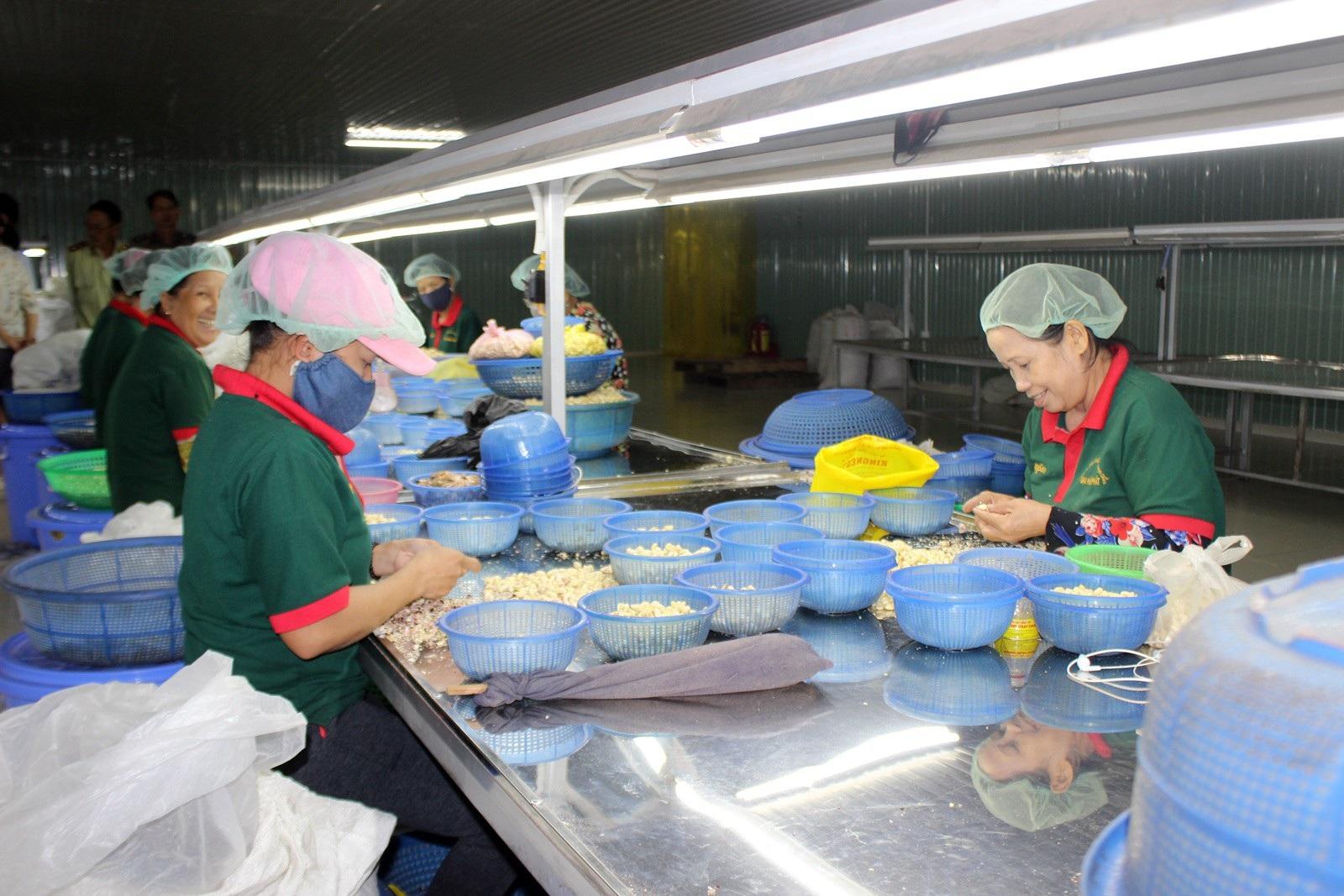 Phú Yên: Mức thưởng Tết thấp nhất là 100.000 đồng - Ảnh 2.