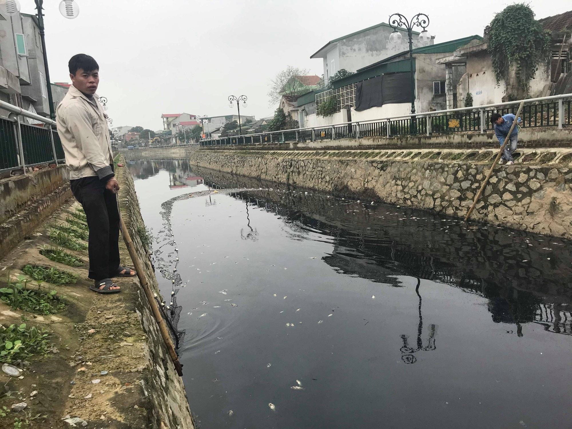 Cận cảnh đoạn kênh dày đặc cá chết tra tấn người dân tại TP Vinh! - Ảnh 10.