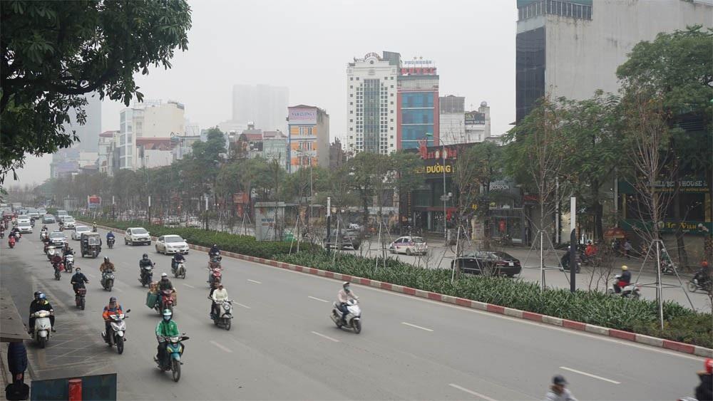 Phong lá đỏ ở Hà Nội chưa kịp đỏ đã ngả... màu đen - Ảnh 2.