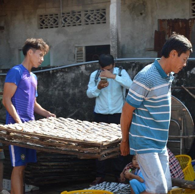 Cà Mau: Làng khô biển vào vụ Tết, nhân công kiếm bạc triệu - Ảnh 3.