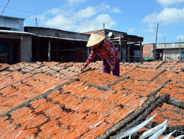 Cà Mau: Làng khô biển vào vụ Tết, nhân công kiếm bạc triệu - Ảnh 4.