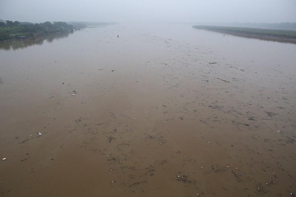 Hà Nội: Sông Hồng xuất hiện nhiều củi rác trôi dạt - Ảnh 2.