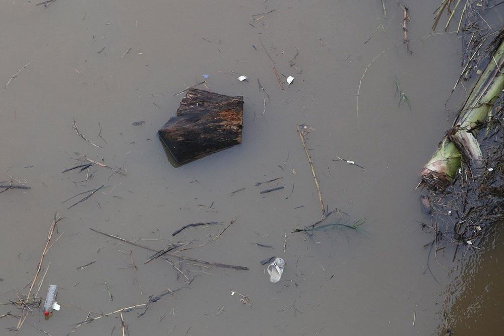 Hà Nội: Sông Hồng xuất hiện nhiều củi rác trôi dạt - Ảnh 11.