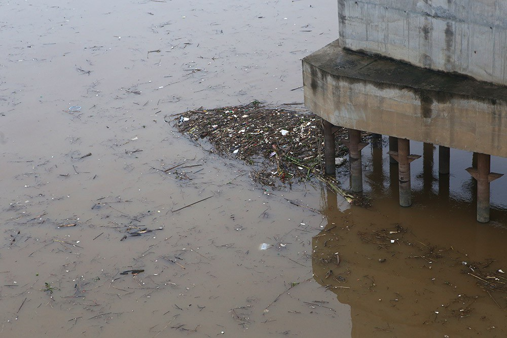 Hà Nội: Sông Hồng xuất hiện nhiều củi rác trôi dạt - Ảnh 4.