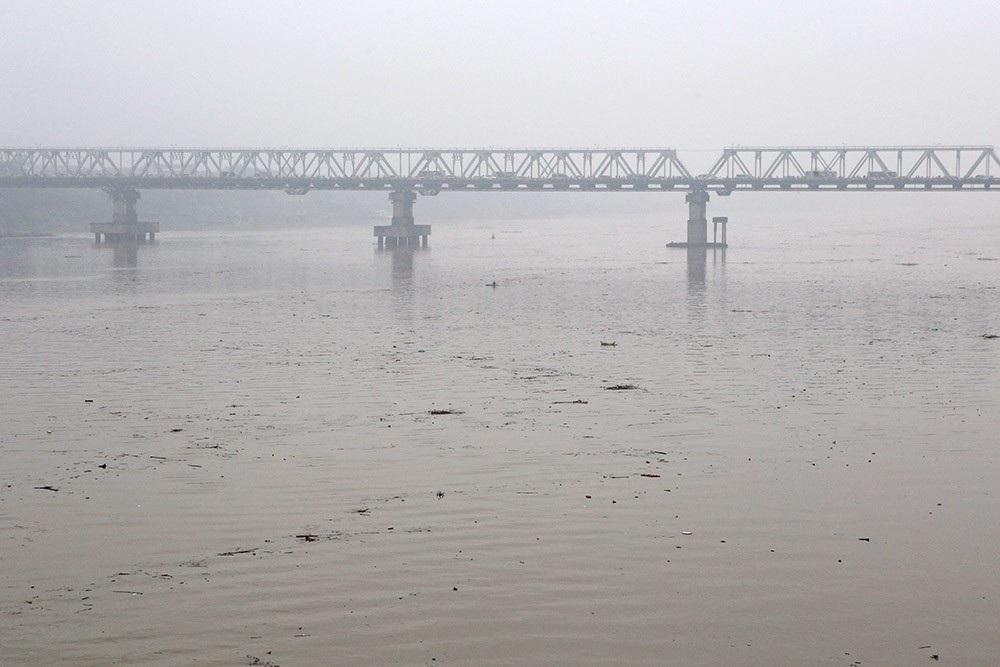 Hà Nội: Sông Hồng xuất hiện nhiều củi rác trôi dạt - Ảnh 8.