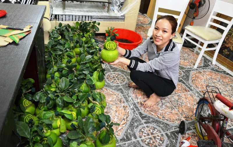 TPHCM: Săn trái cây độc, lạ phục vụ thượng đế ngày Tết - Ảnh 1.