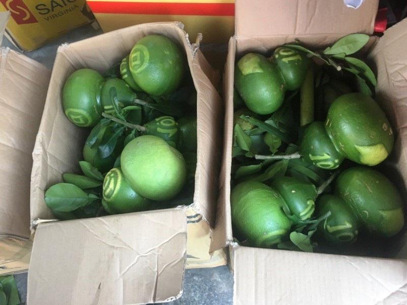 TPHCM: Săn trái cây độc, lạ phục vụ thượng đế ngày Tết - Ảnh 2.
