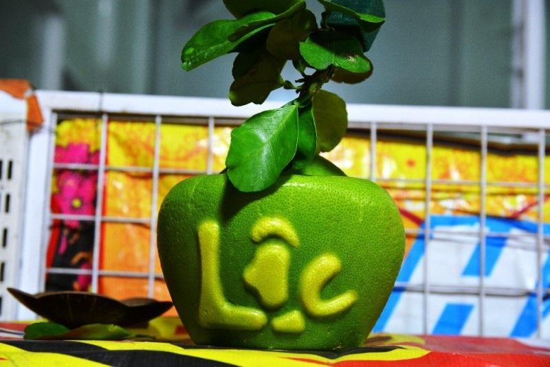 TPHCM: Săn trái cây độc, lạ phục vụ thượng đế ngày Tết - Ảnh 3.