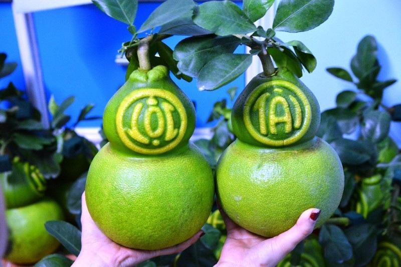 TPHCM: Săn trái cây độc, lạ phục vụ thượng đế ngày Tết - Ảnh 5.