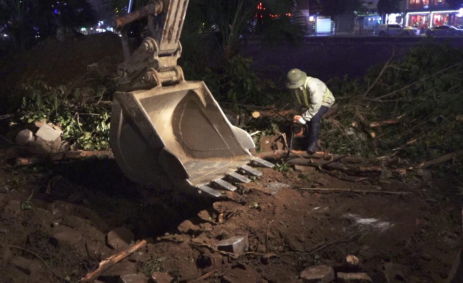 Công nhân ngày đêm đánh chuyển cây xanh, chạy đua mở rộng đường Láng - Ảnh 4.