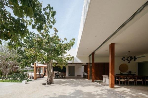 Căn nhà biết nịnh chủ nhưng không mất lòng môi trường - Ảnh 3.