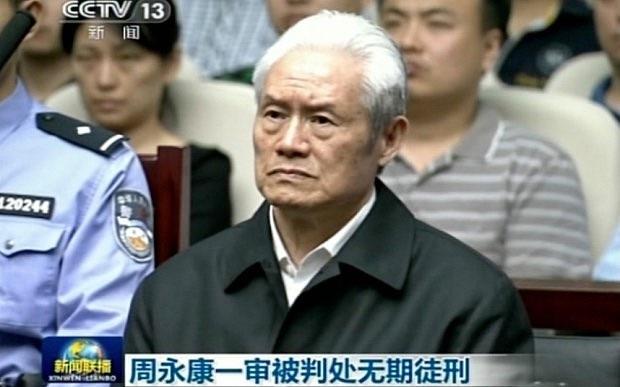 Cuộc sống của các hổ lớn bên trong nhà tù bí ẩn nhất Trung Quốc - Ảnh 3.