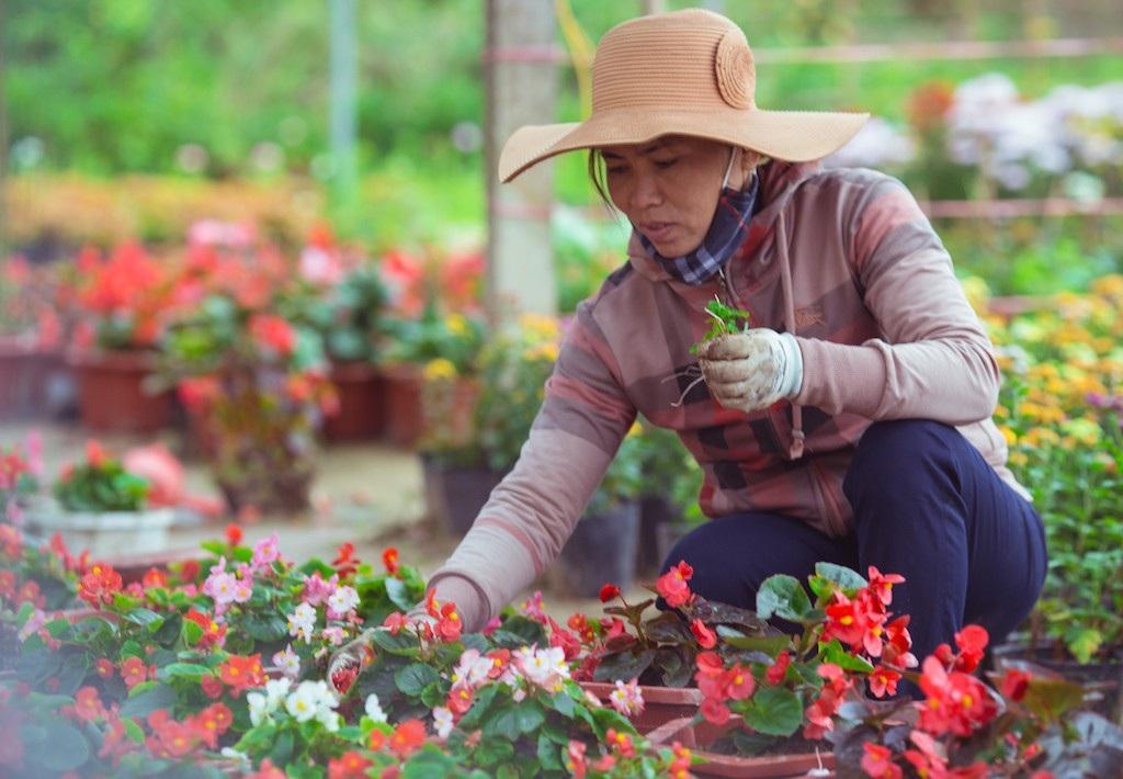 Làng hoa thành Vinh nhộn nhịp vào mùa Tết - Ảnh 2.