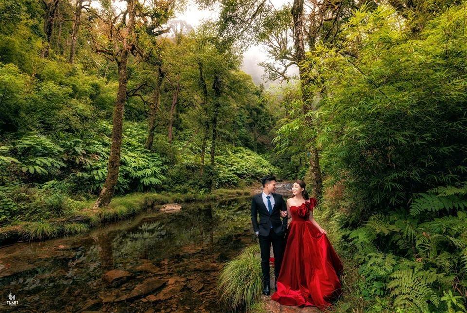 Ảnh cưới long lanh từ Nam ra Bắc của cô dâu Nam Định đeo vàng trĩu cổ, ở lâu đài 7 tầng - Ảnh 3.