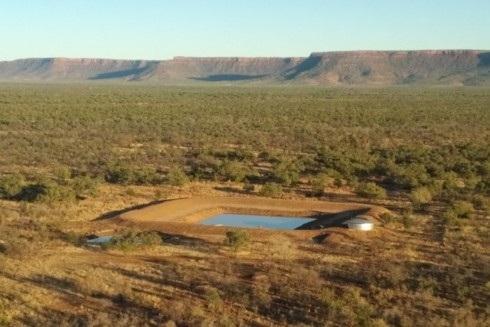 Một công ty Việt Nam mua ba trại chăn thả gia súc phía bắc Australia - Ảnh 1.