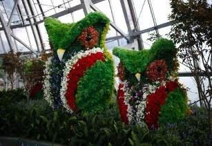 Thưởng lãm mùa xuân châu Âu tại Vinpearl Land Nha Trang - Ảnh 2.