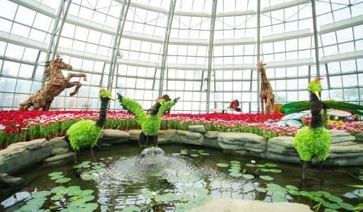Thưởng lãm mùa xuân châu Âu tại Vinpearl Land Nha Trang - Ảnh 3.