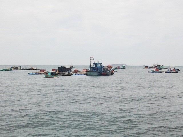 Nhiều lồng bè nuôi thủy sản ở khu vực đảo Hòn Chuối (tỉnh Cà Mau).