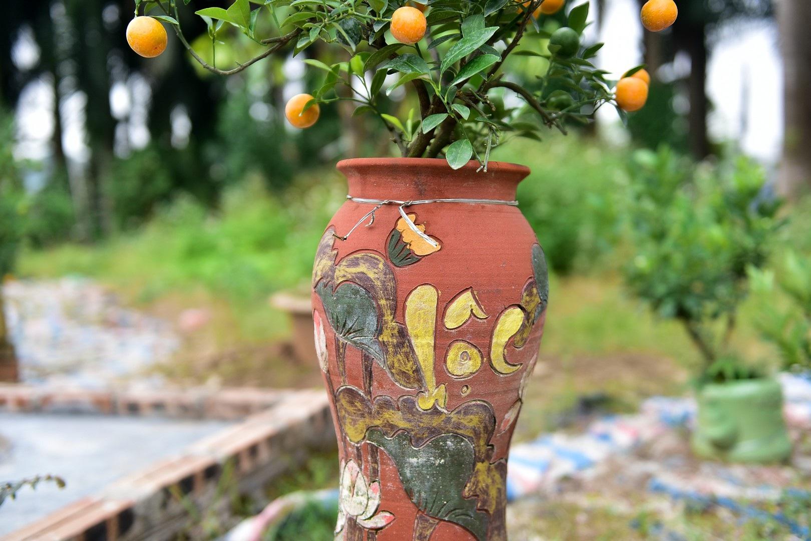Độc đáo: Quất lọ bonsai hút khách chơi Tết - Ảnh 8.
