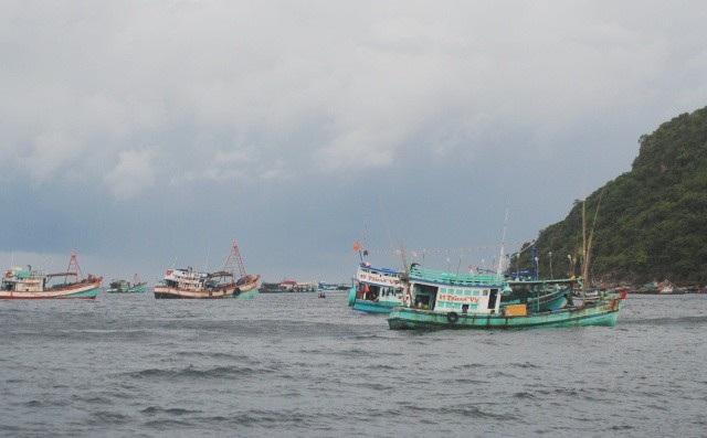 Tàu cá neo đậu tại đảo Hòn Chuối, Cà Mau. (Ảnh: CTV)