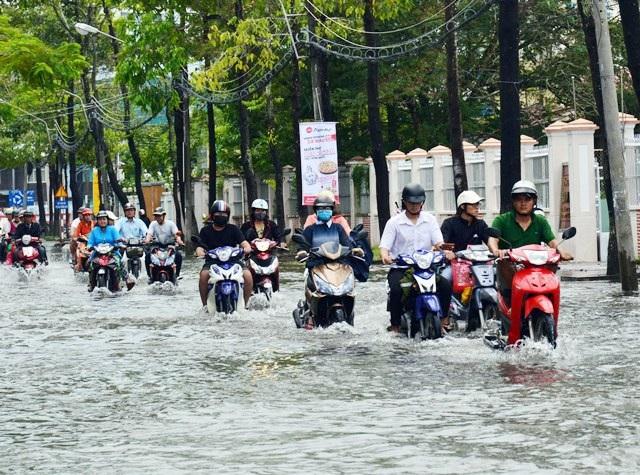 Ảnh hưởng bão số 1, Bạc Liêu - Cà Mau ngập nặng vì mưa lớn - 8