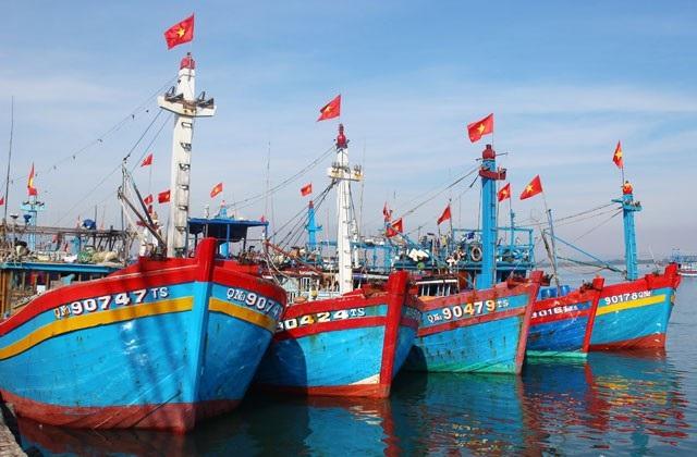 Đội tàu cá xa bờ của đất đảo tiền tiêu Lý Sơn sẵn sàng ra khơi với kỳ vọng về chuyến biển cuối năm bội thu.