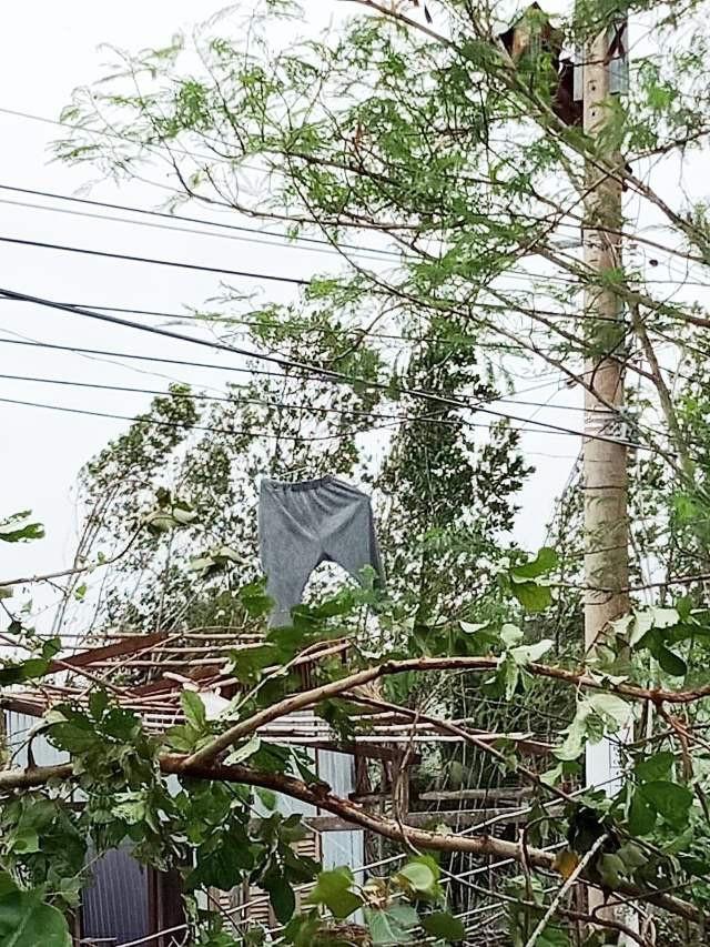 Lốc xoáy tan hoang nhà dân ở xã ven biển Long Điền Đông (huyện Đông Hải, tỉnh Bạc Liêu). (Ảnh: CTV)