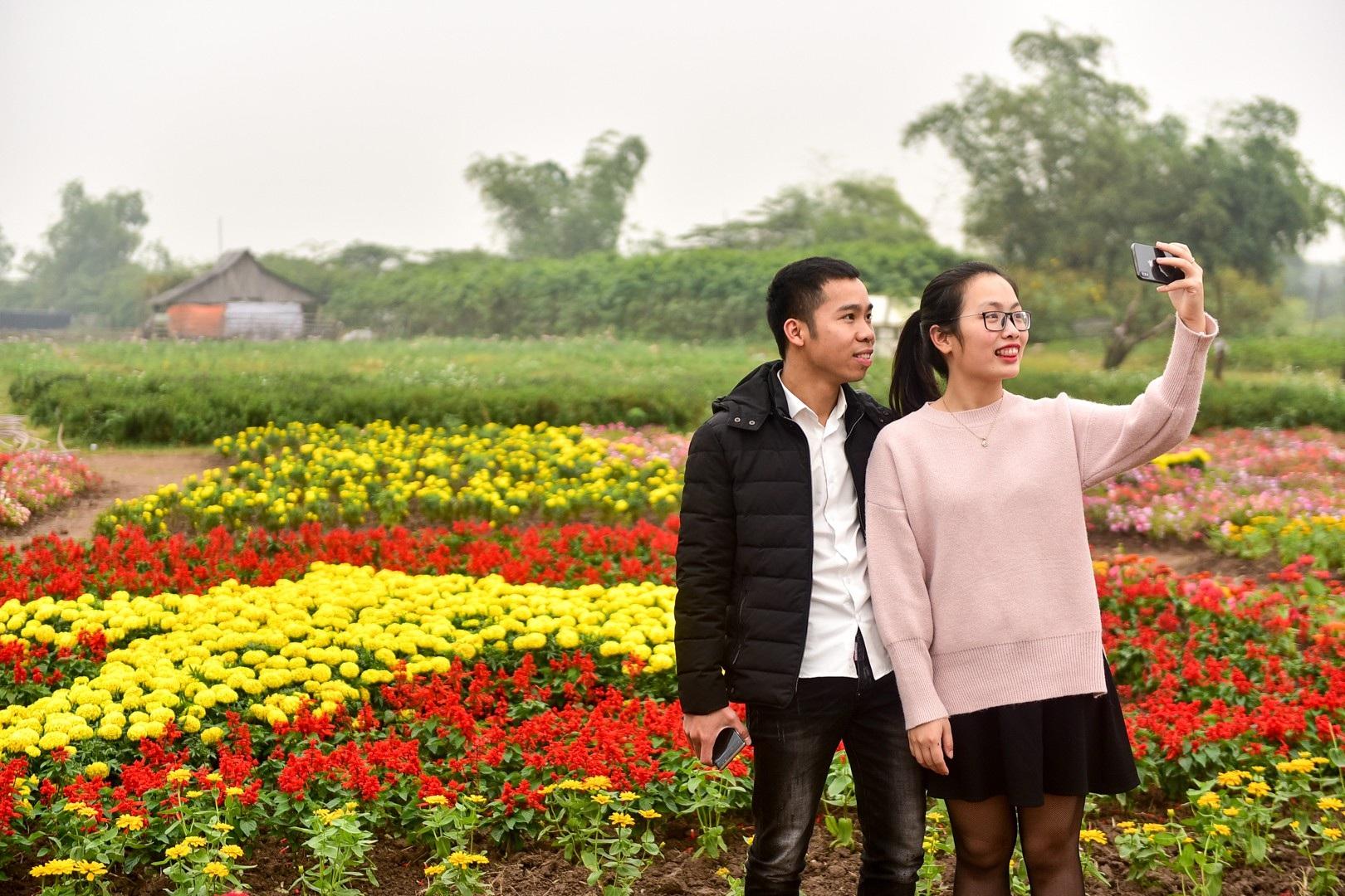 Vườn hoa hình cúp vô địch khổng lồ cổ vũ đội tuyển Việt Nam - Ảnh 10.