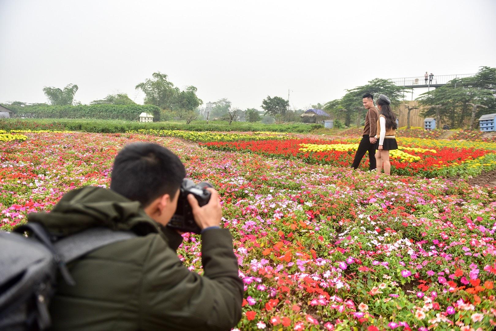 Vườn hoa hình cúp vô địch khổng lồ cổ vũ đội tuyển Việt Nam - Ảnh 11.