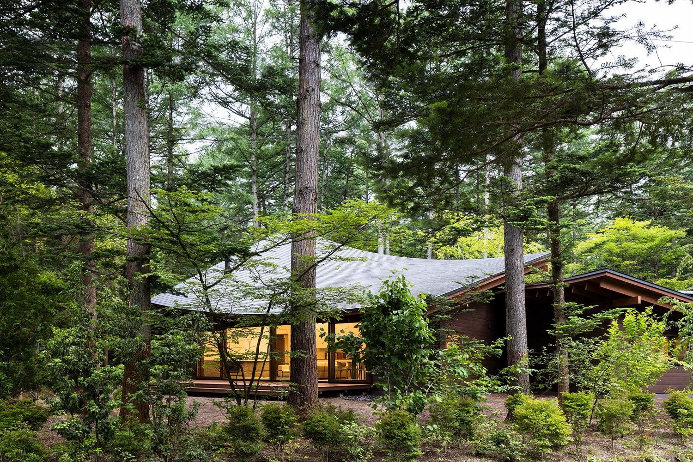 """Biệt thự hình """"4 chiếc lá rơi"""" đẹp như mơ của kiến trúc sư Nhật Bản - Ảnh 1."""