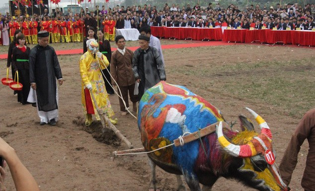 Hình ảnh lão nông đóng vai vua Lê Đại Hành xuống ruộng đi cày cầu mùa màng bội thu tại lễ hội Tịch điền - Đọi Sơn