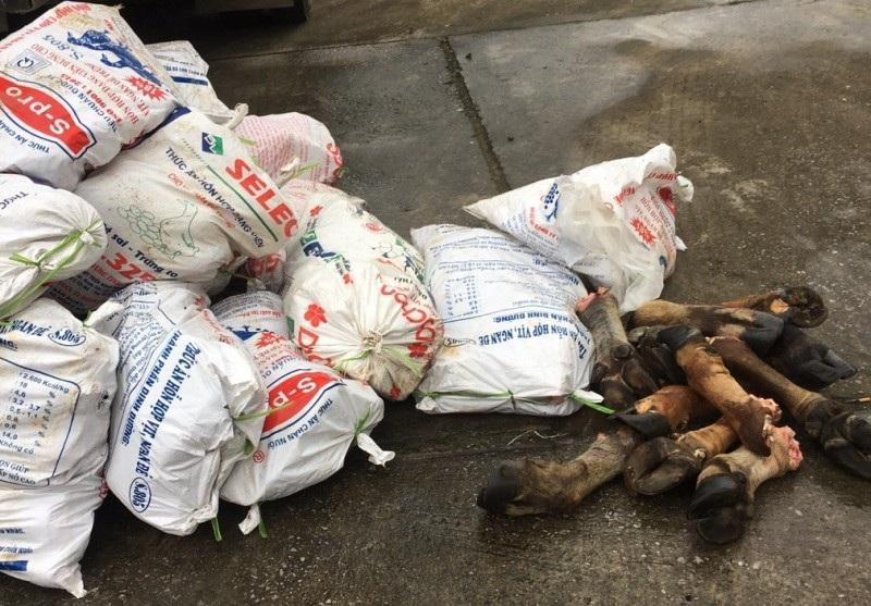 Xe tải chở gần 1 tấn chân trâu bò hôi thối đi TP. Hồ Chí Minh tiêu thụ - Ảnh 1.