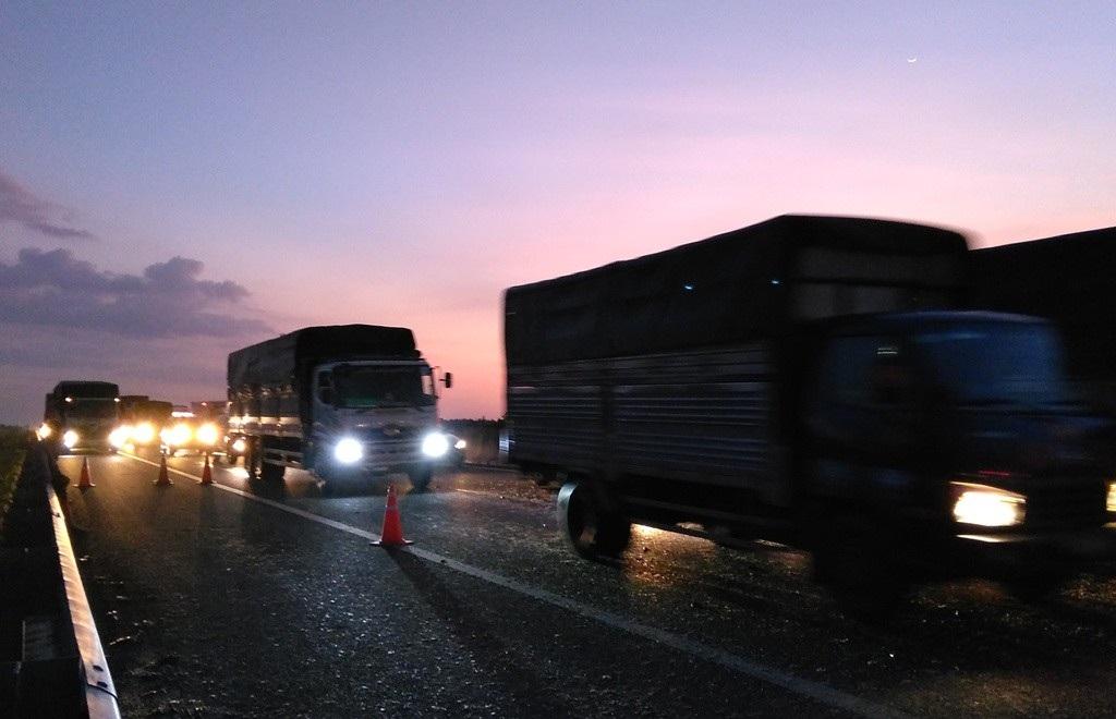 Xe tải lật nhào trên cao tốc, hàng ngàn con cá rải khắp mặt đường - Ảnh 3.