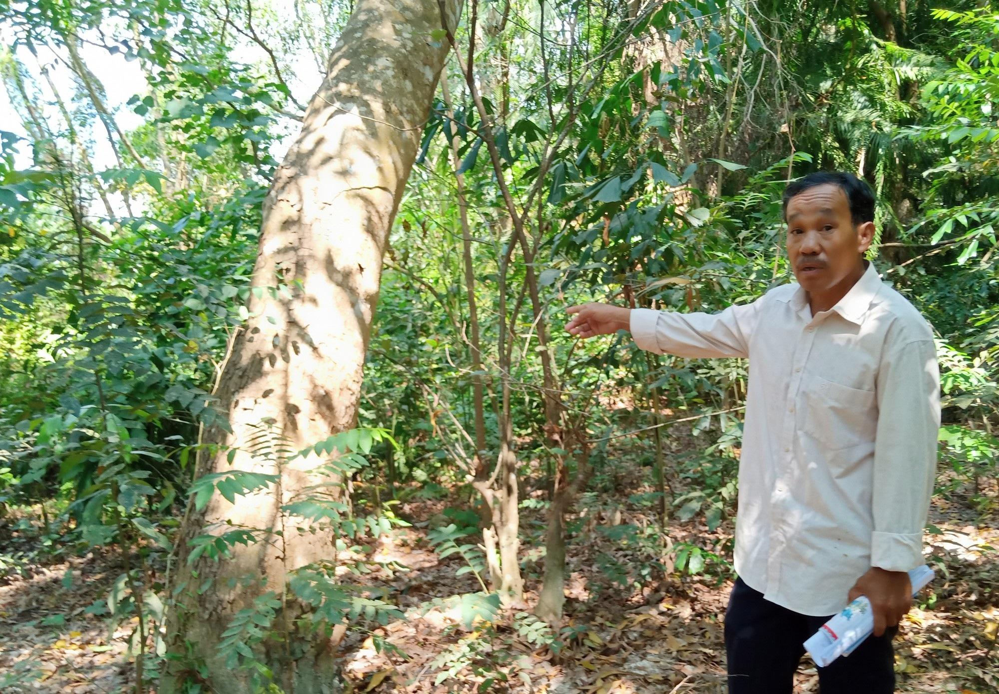 Tình tiết khôi hài trong vụ cấp sổ đỏ hơn 11.000m2 đất vàng tại Phú Quốc! - Ảnh 4.