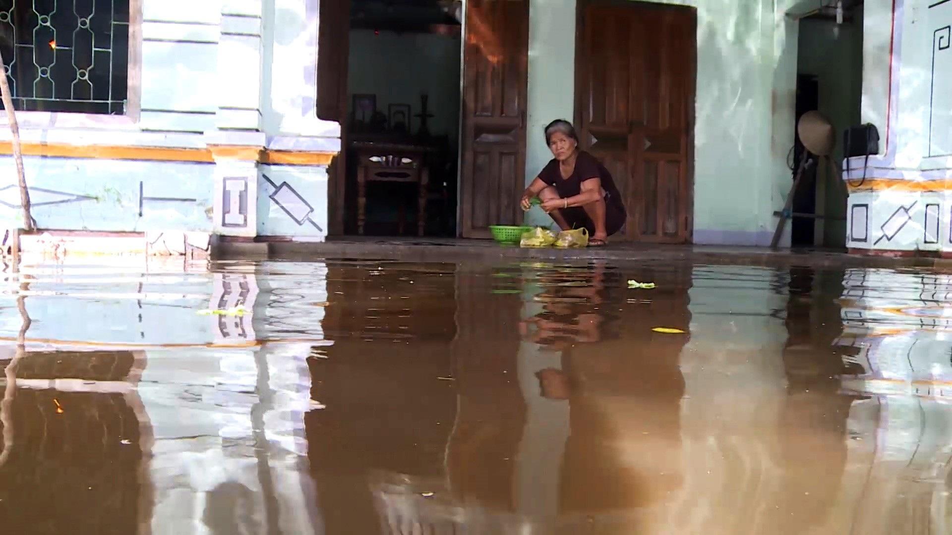 Gần 3 tháng, 40 hộ dân bị nhấn chìm trong lụt lội, ô nhiễm! - Ảnh 2.