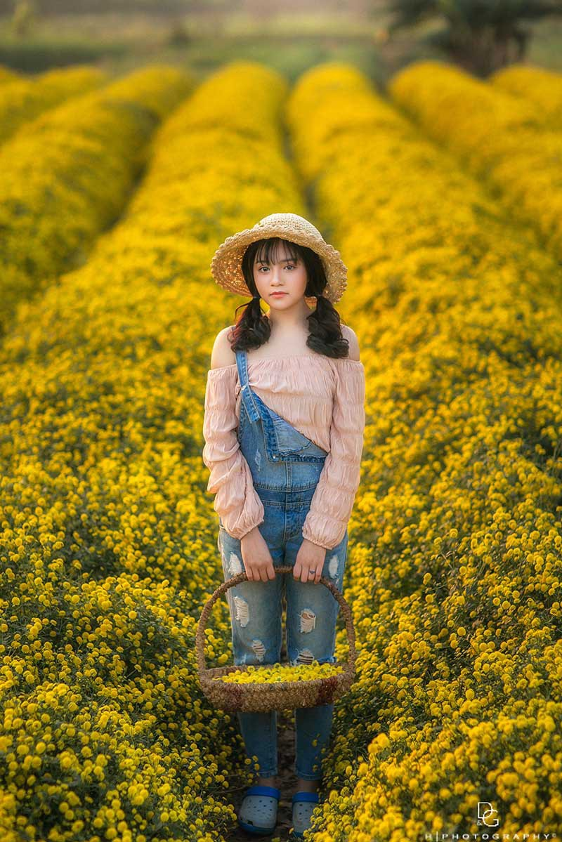 Nàng thơ tuổi teen khoe sắc giữa vườn hoa cúc vàng - Ảnh 8.