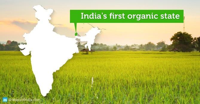 """Điều kỳ diệu ở Bang đầu tiên của Ấn Độ """"hữu cơ hóa"""" 100% nền nông nghiệp - Ảnh 3."""