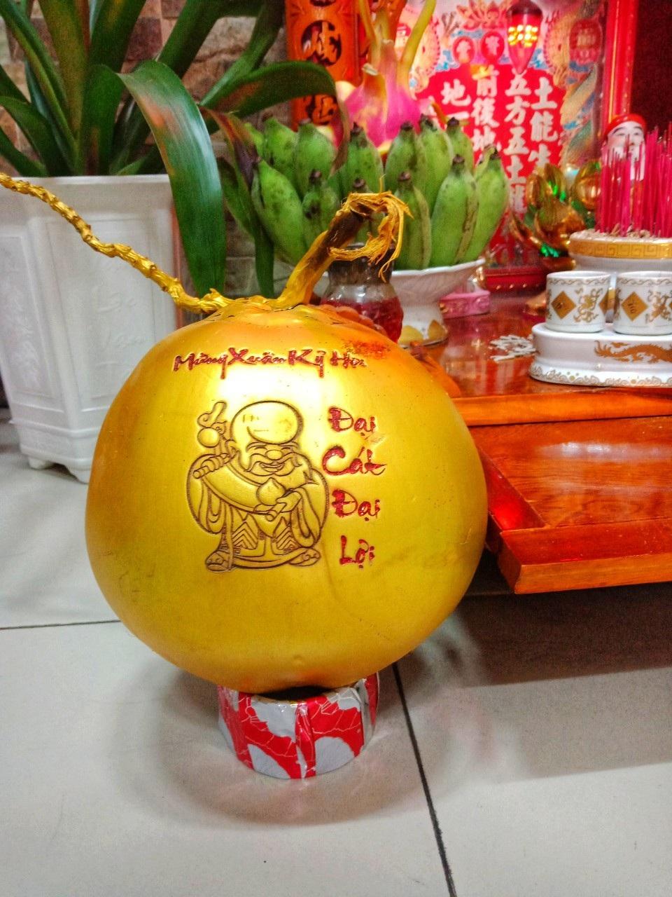 Dừa vàng khắc thư pháp: Hàng độc chơi Tết, dân buôn bán nghìn quả - Ảnh 2.