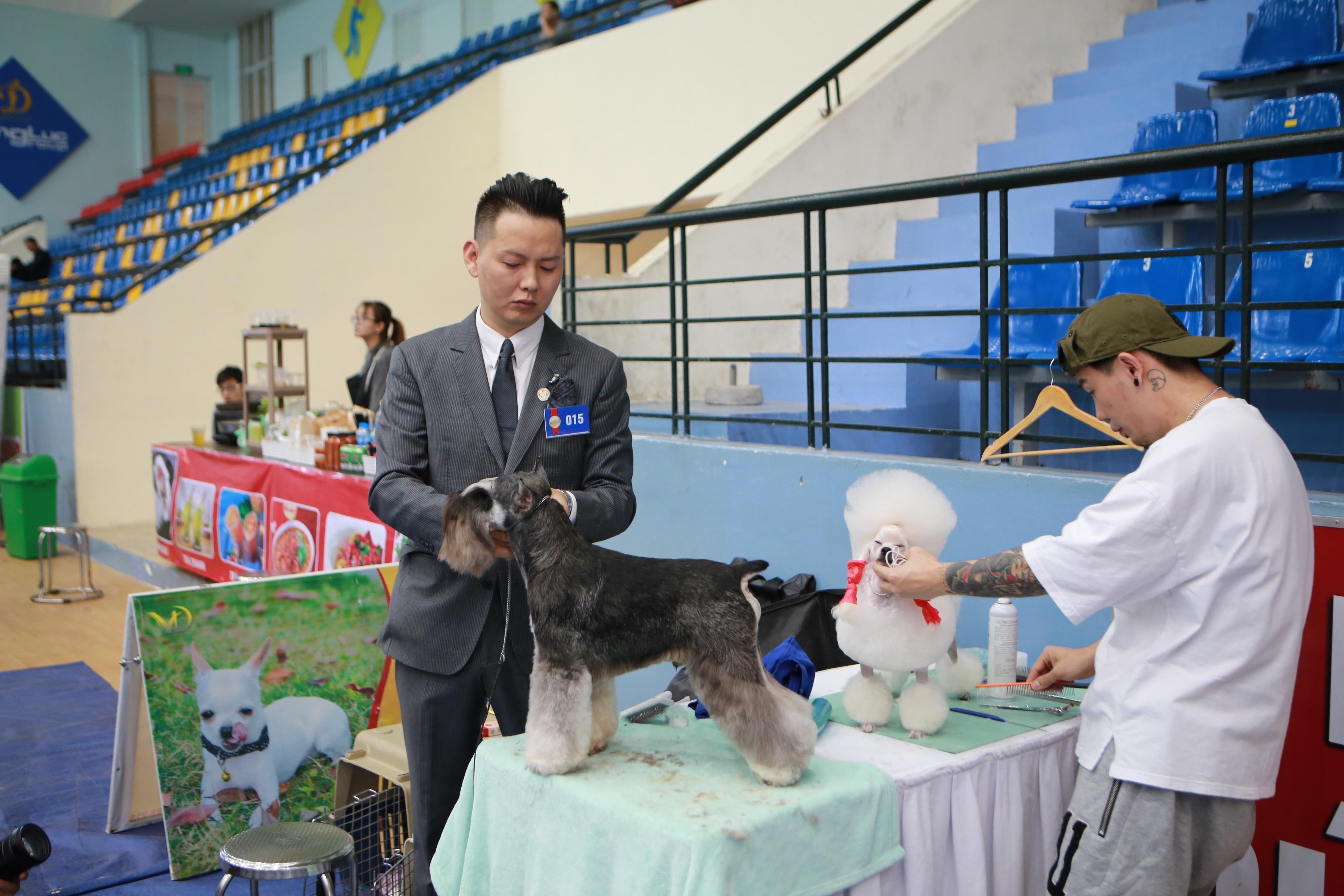 Hơn 200 chú chó quý tộc giá nghìn USD thi tài giành danh hiệu tại Hà Nội - 8