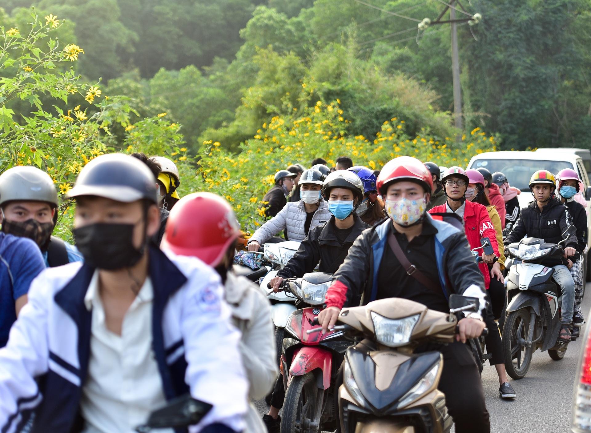 Giới trẻ đua nhau lên núi Ba Vì săn hoa dã quỳ - 21