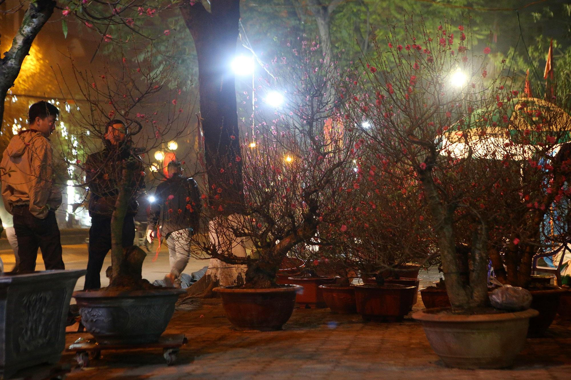 Trắng đêm trông đào Tết trong giá lạnh - 4
