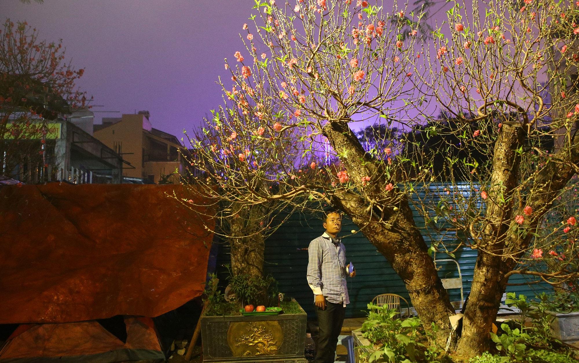 Trắng đêm trông đào Tết trong giá lạnh - 7