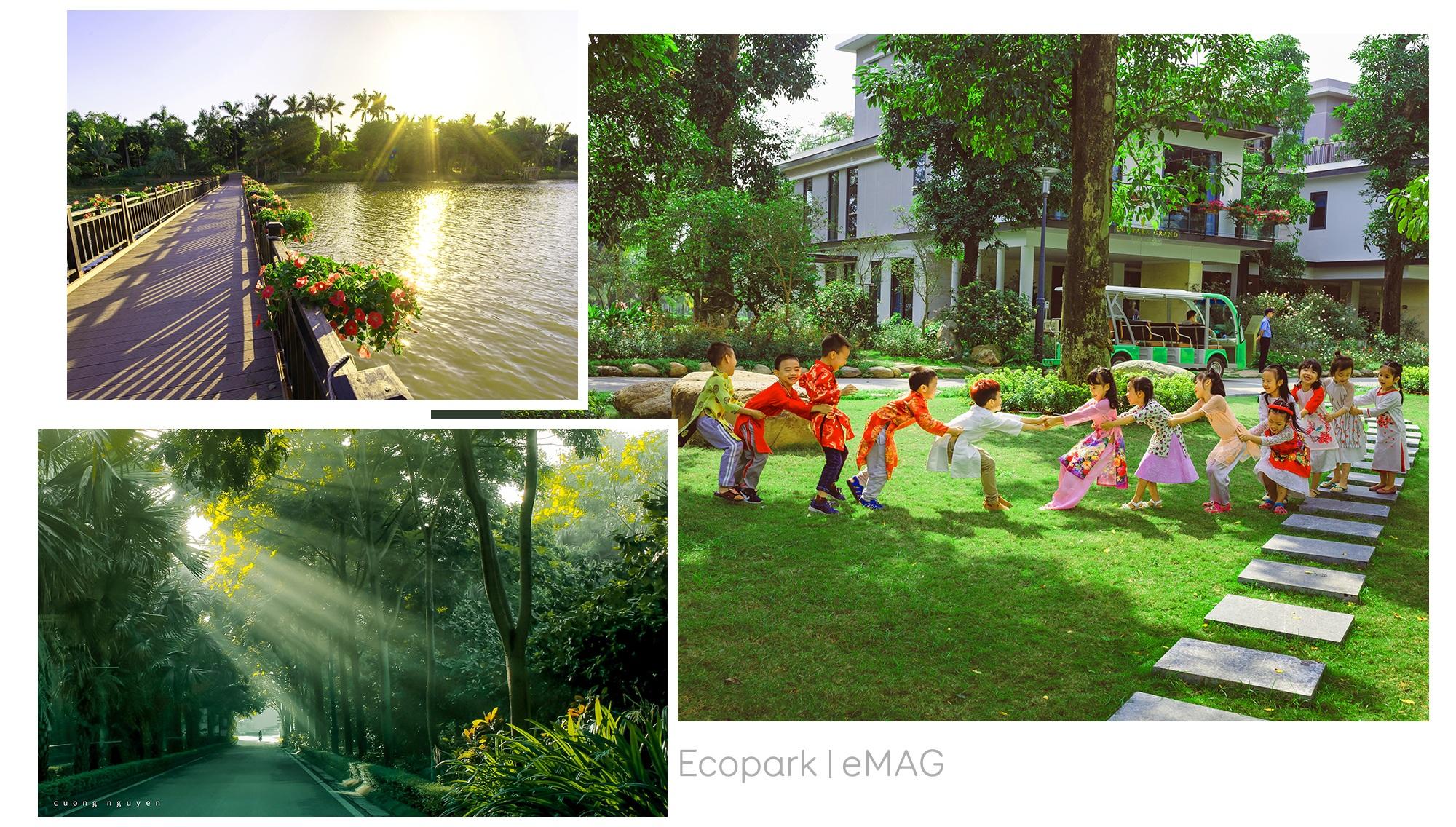 Biệt thự đảo Ecopark Grand – The Island kiến tạo chuẩn sống wellness - 12
