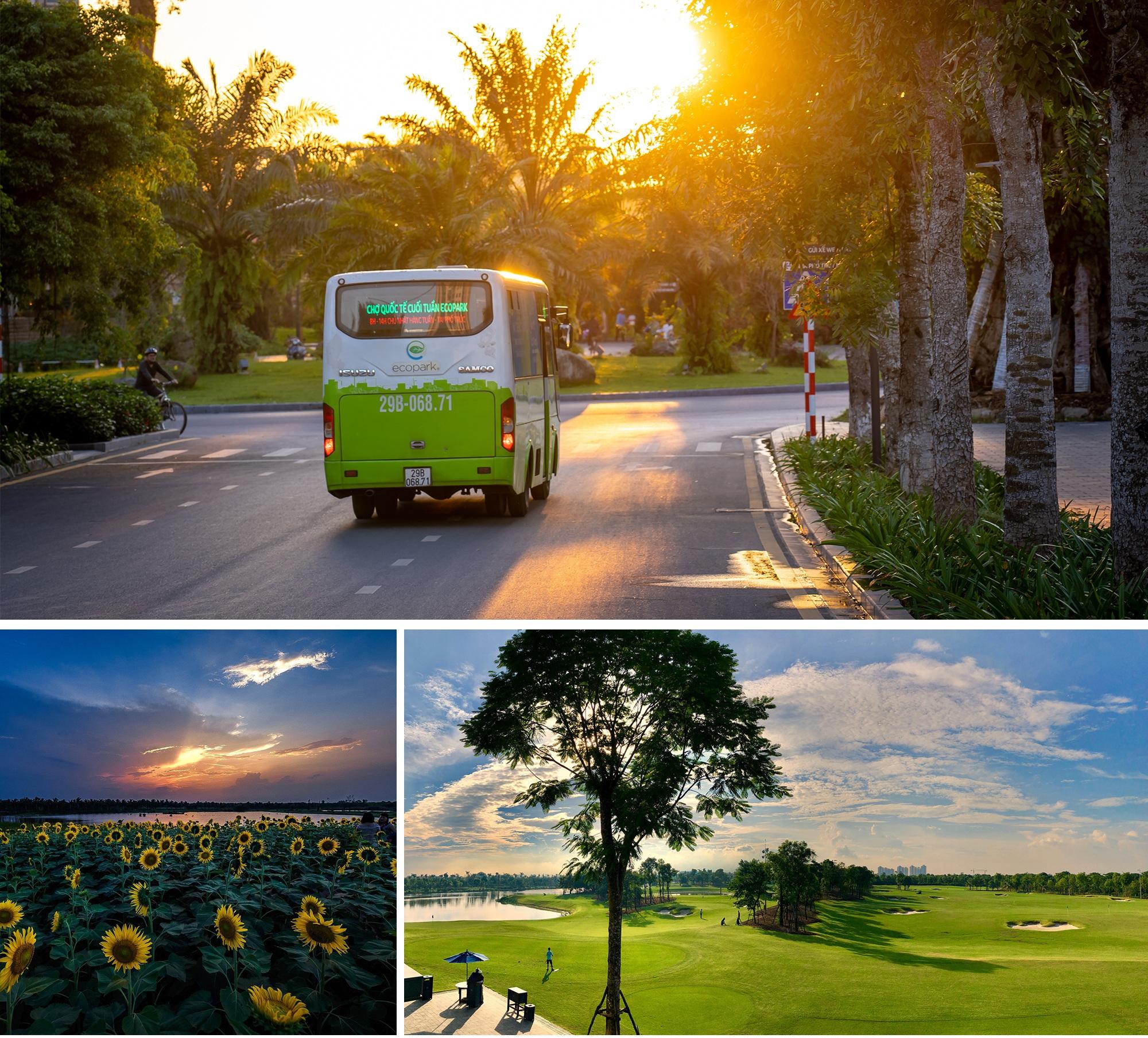 Biệt thự đảo Ecopark Grand – The Island kiến tạo chuẩn sống wellness - 13